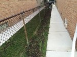 My Seedy Neighborhood